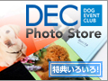 DEC Photo Store