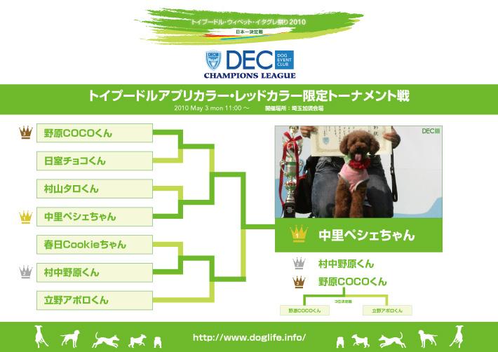 アプリカラー・レッドカラー限定トーナメント表