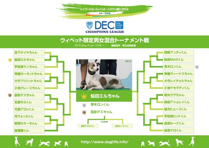 ウィペット男女混合トーナメント表