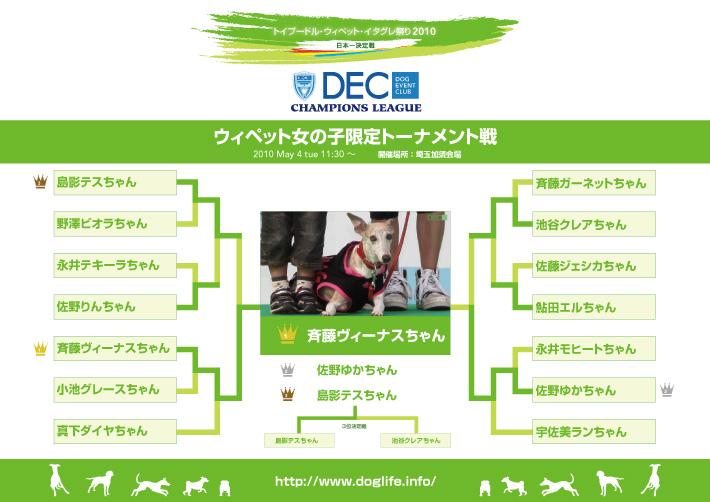 ウィペット女の子限定トーナメント表